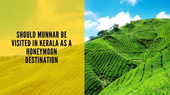 Should Munnar be visited in Kerala as a Honeymoon Destination