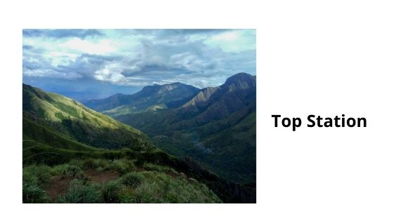 Top Station is the highest point situated in the city of Munnar