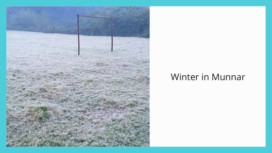 Winter in Munnar