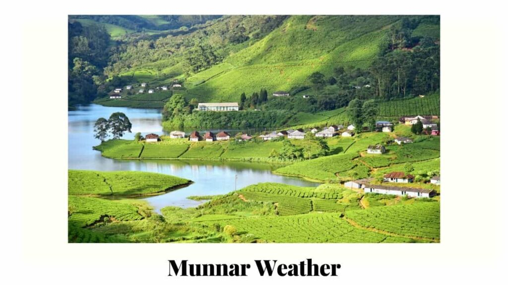 about munnar weather