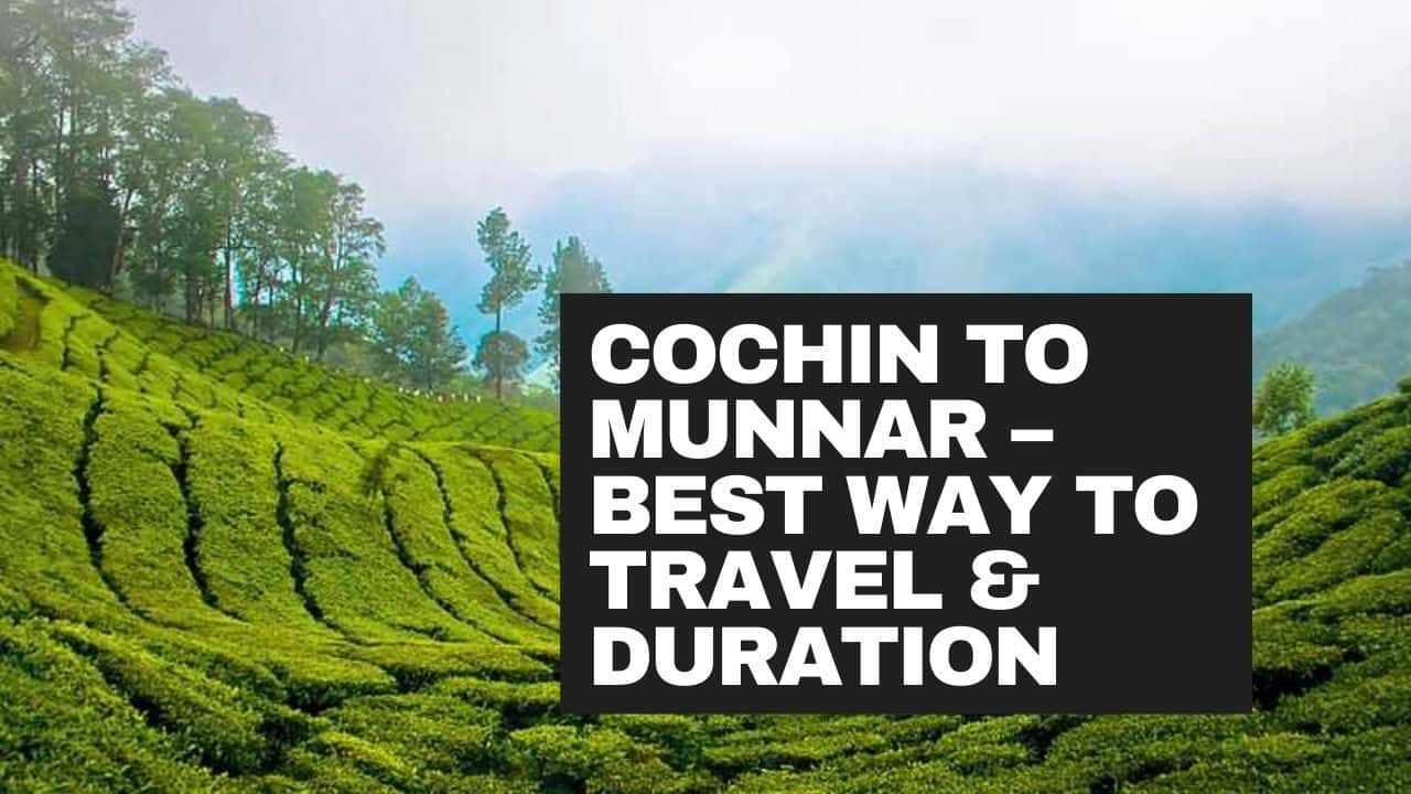cochin to munnar best way to travel