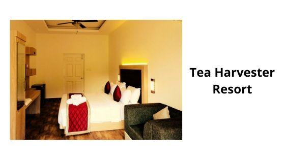 tea harvester resort munnar