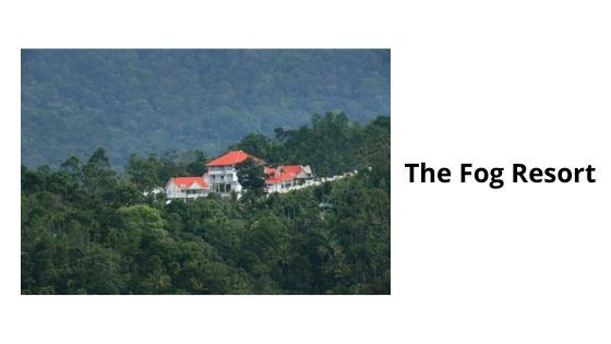 the fog resort munnar