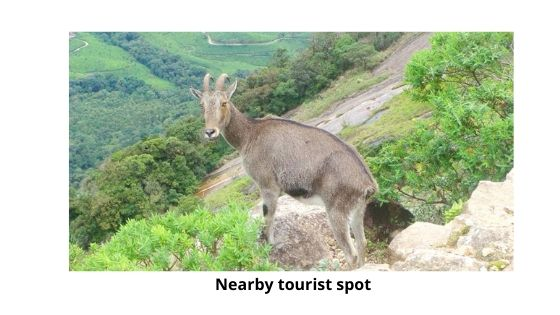 Nearby tourist spot on seven springs plantation resort munnar kerala india