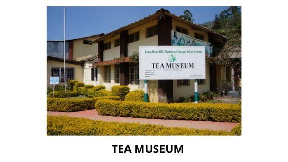 Tea museum munnar kerala india