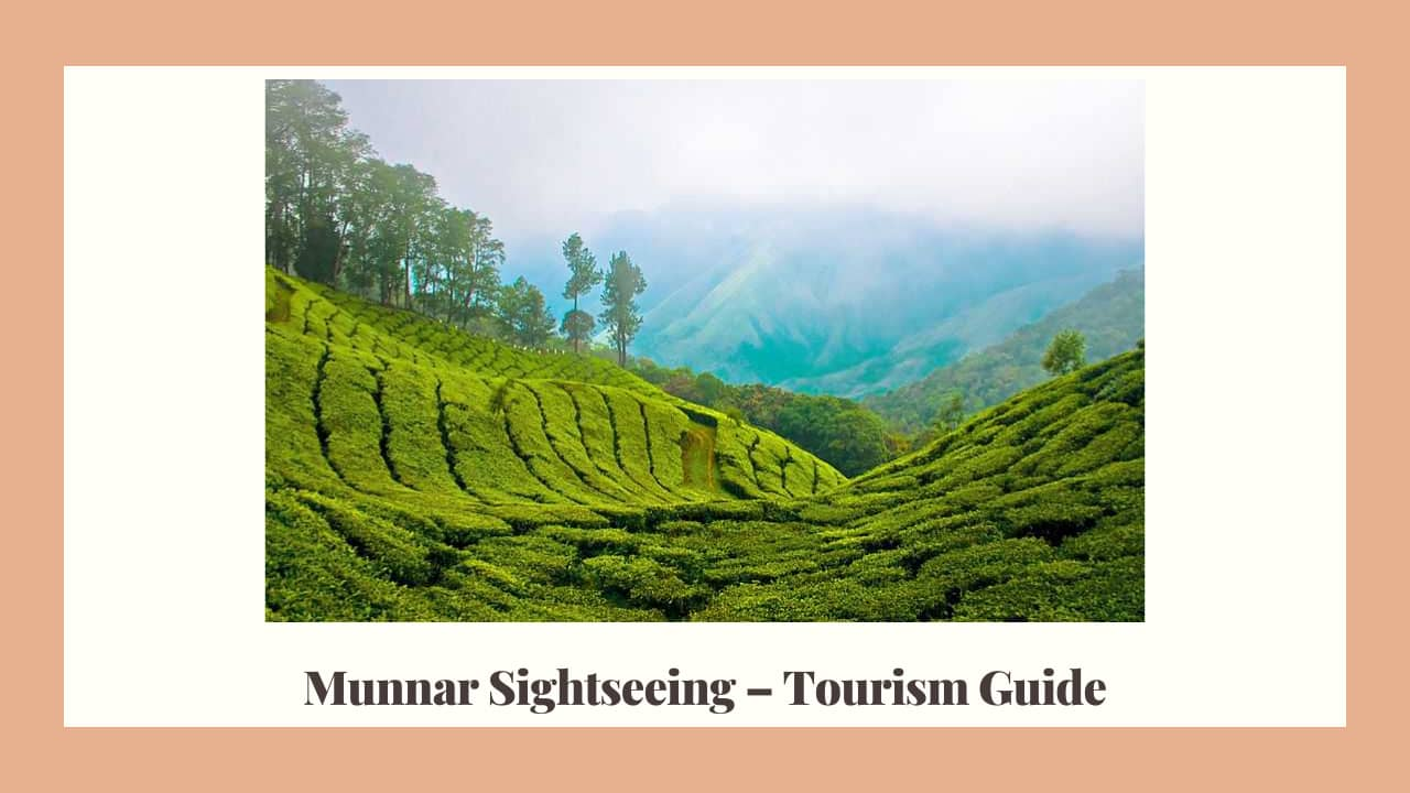 Munnar local Sightseeing kerala india