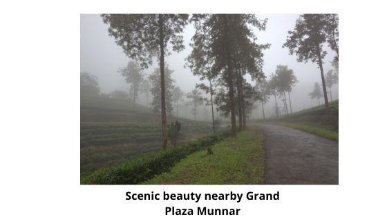 Scenic Beauty near by grand plaza munnar kerala india
