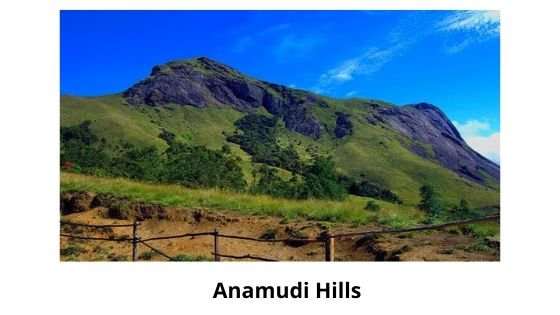 anamudi is one of the Munnar local Sightseeing place