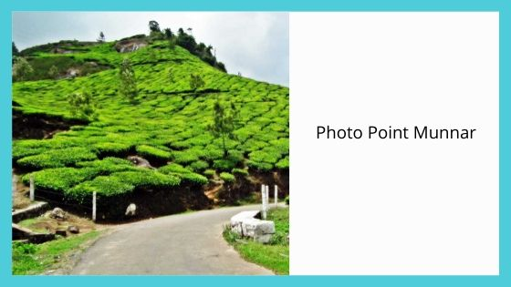 Photo Point tourist places near me in Munnar